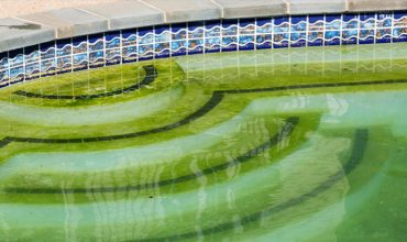 Algae Removal & Prevention Pool Services | Stahlman Pool Company - Naples, Florida